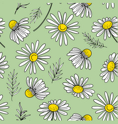 Hand drawn camomile flower seamless pattern vector