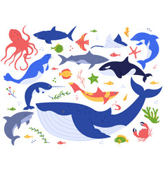 Ocean animals cute fish orca shark and blue vector