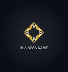 star geometry abstract gold logo vector image