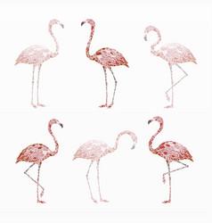 variety pink flamingo set vector image