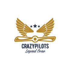 air pilots team retro airplane icon vector image vector image