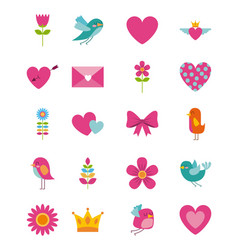 collection cute beauty flower bird heart envelope vector image
