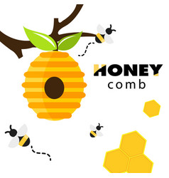 Honeycomb bee hive white background image vector