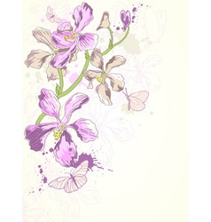 violet orchids vector image