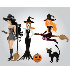 wicked witch vector image