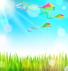 Summer sunny landscape with green grass and vector image