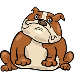 english bulldog dog cartoon vector image