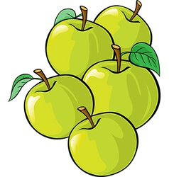 Green apples isolated vector
