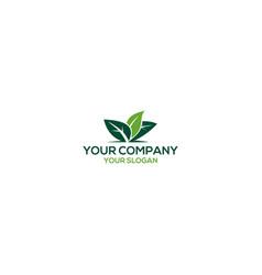 green leaf care logo design vector image