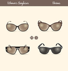 Ladies Sunglasses vector image