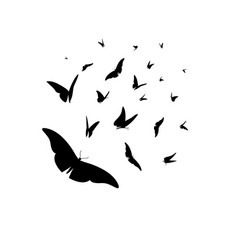 Set different black silhouettes butterflies vector