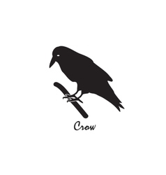 The black silhouette of a crow on a branch vector image