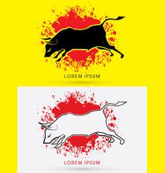 charging bull fighting bull vector image vector image