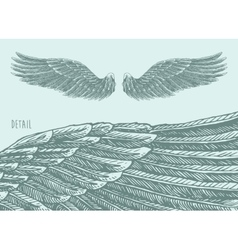 Angel wings engraved sketch vector