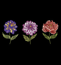 Embroidery floral collection vector