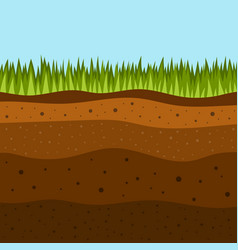 grass with underground layers earth vector image