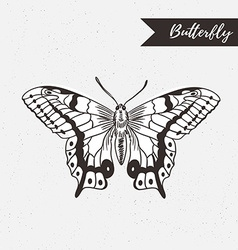 Hand drawn butterfly logo design element on the vector