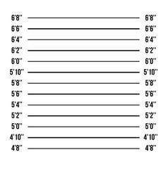 Mugshot police police mugshot lineup vector