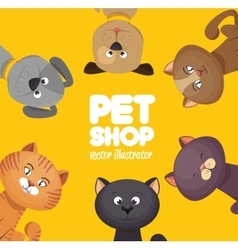 Poster pet shop cute cats yellow background vector