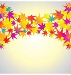 autumn background maple vector image