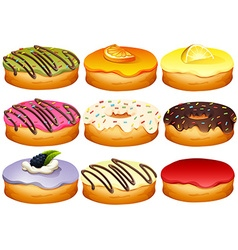 Different flavor of donuts vector image vector image