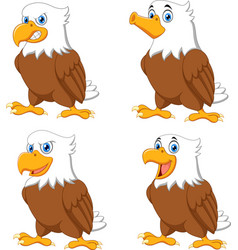 cartoon eagles collection set vector image