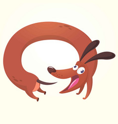 Cartoon of cute purebred dachs vector