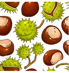 Chestnut nuts pattern on white background vector