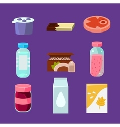 Common Goods and Everyday Products in Flat Style vector image