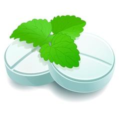 herbal pills vector image