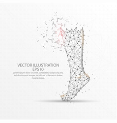 human leg low poly wire frame on white background vector image