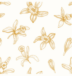 monochrome seamless pattern with blooming vanilla vector image