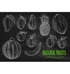Natural fresh fruits chalk sketch on chalkboard vector
