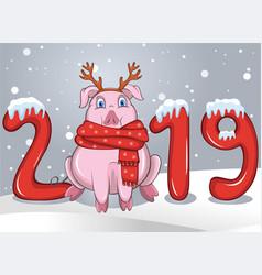 pig among text 2019 vector image
