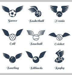 Sport balls with wings icon set vector image