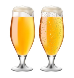 Beer in glass with drops vector image