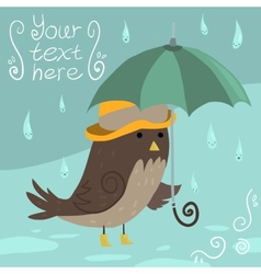 Mr Sparrow with Umbrella vector image vector image