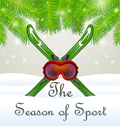 The season of sport Goddles and skiing vector image vector image