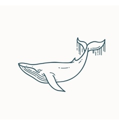 Whale linear vector image vector image