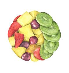 Circle healthy fresh fruit salad vector
