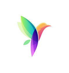 colorful bird logo design vector image