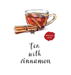 glass cup of tea with dried cinnamon sticks vector image