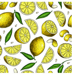Lemon seamless pattern drawing summer vector