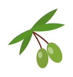 Olive branch vector image