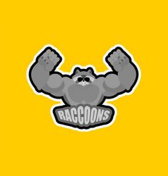 Raccoons sport logo raccoon sports team club vector