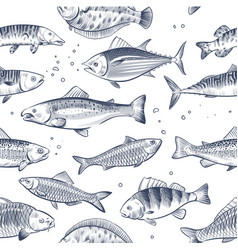 sketch fishes seamless pattern etched ocean fish vector image