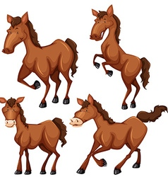 Brown horse in four different poses vector