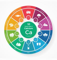 10 foods high in Calcium vector