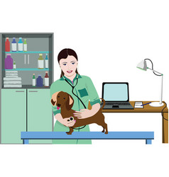 Animal medical care concept vector