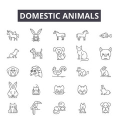 domestic animals line icons signs set vector image